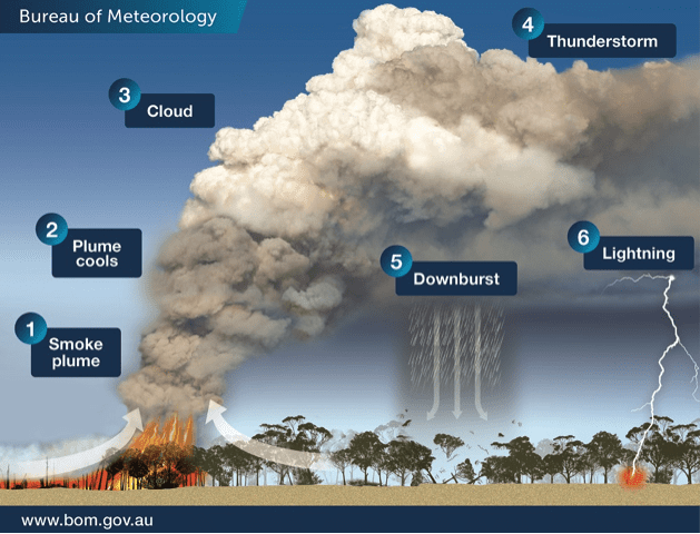 australia_fire_STEM_Education_How smokes can create clouds that cause lightningmedia.bom.gov.au/social/blog/1618/when-bushfires-make-their-own-weather/