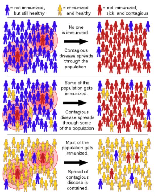 Herd immunity, Tkarcher